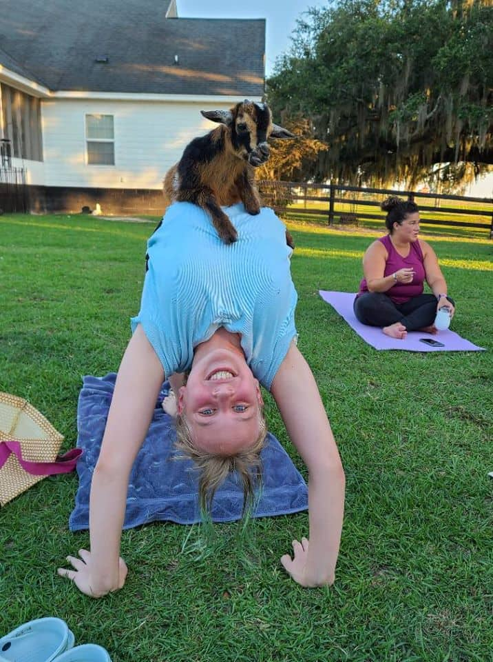 Beginner Workout Valdosta. A photo of a girl doing a bridge yoga pose with a goat on her stomach.