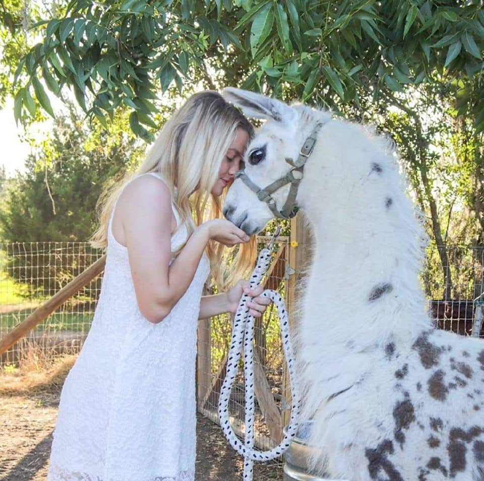 Teenager Birthday Party idea. A photo of a blonde teenaged girl snuggling with a llama