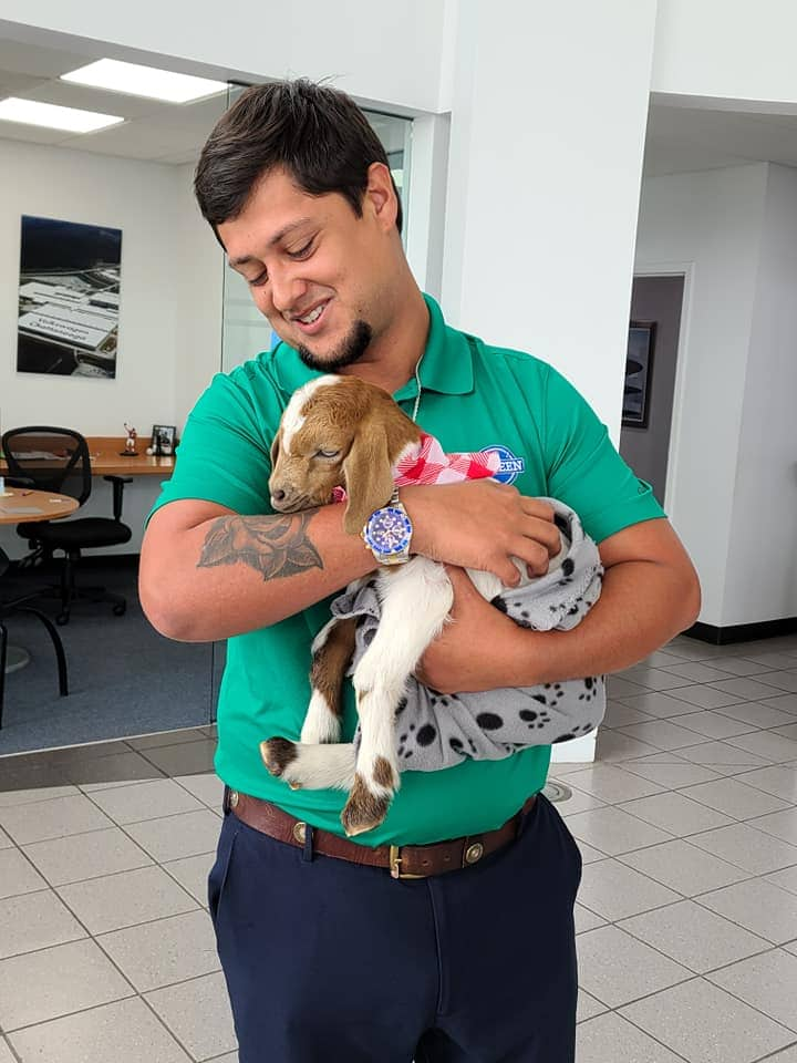 Flower deleivery Valdosta. A man holding a goat from Fifth Day Farm's Goat Gram delivery.
